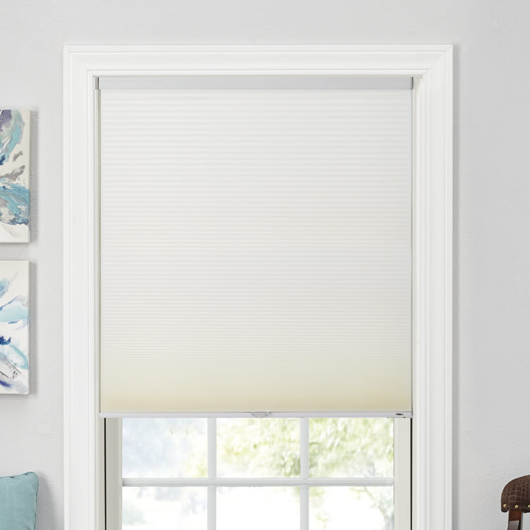 No Gallery Image Available